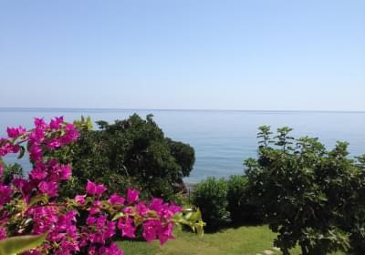 Bed And Breakfast Villa Addaura